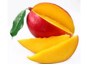 kathar mango